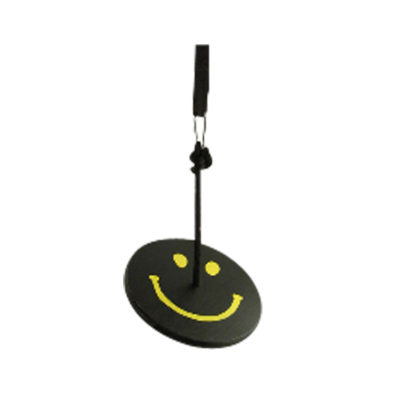 black and yellow smiley face tree swing kit