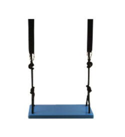 Blue adult wood tree swing
