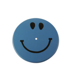 blue smiley face tree swing seat