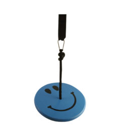 blue smiley wood tree swing kit for kids