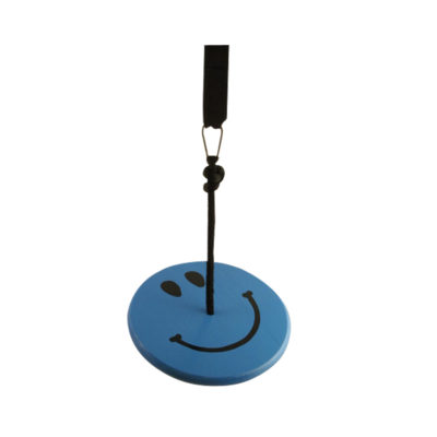 blue smiley wood tree swing kit for kids