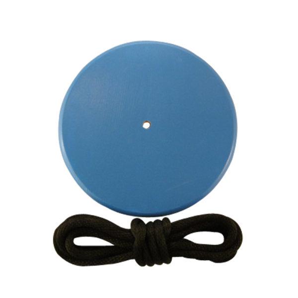 blue round tree swing