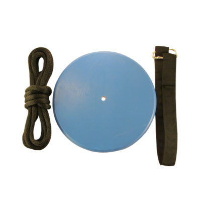 blue round wood tree swing kit