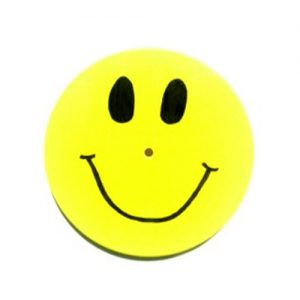 Yellow Smiley Face Wood Disc Swing (SEAT ONLY)