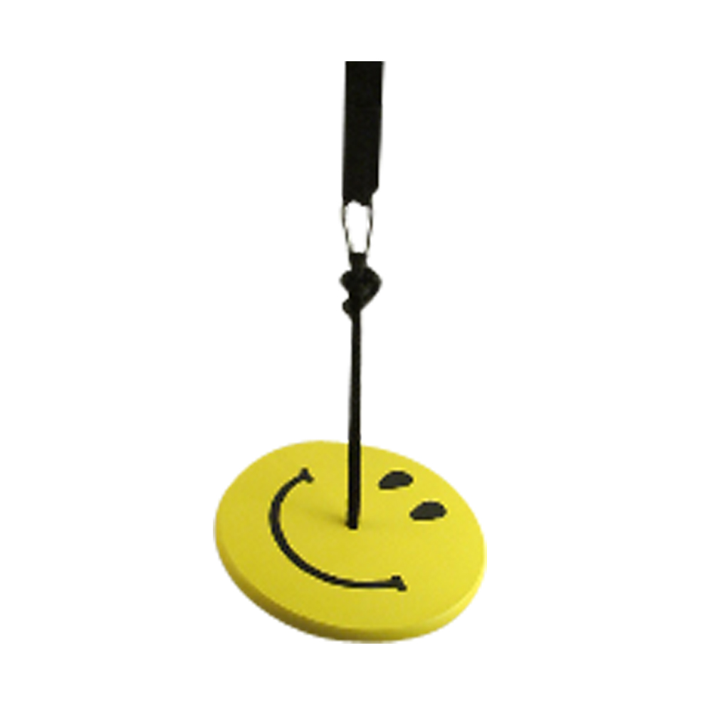 yellow smiley tree swing kit for kids